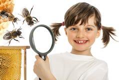 kleines Mädchen und Bienen Lizenzfreie Stockfotos