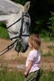 Kleines Mädchen und großer Kopf des Pferds, die Gras isst Stockfoto
