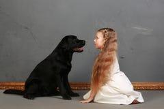 Kleines Mädchen und Hund im Studio stockbilder