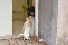 Kleines Mädchen und Katze lizenzfreie stockfotos