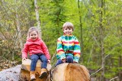 Kleines Mädchen und netter blonder Junge, die zusammen im Wald spielt Lizenzfreie Stockfotografie