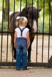 Kleines Mädchen und Pony Stockfotografie