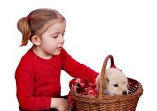 Kleines Mädchen und Welpe stockfotos