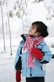 Kleines Mädchen unter Schnee deckte Bäume ab Lizenzfreie Stockfotos