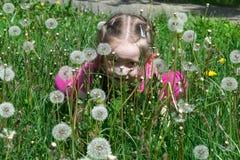 Kleines Mädchen versteckt sich in einer Reinigung im Gras und im Löwenzahn Stockfotos
