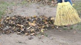 Kleines Mädchen, welches die Blätter mit Besen im Park fegt stock footage