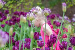 Kleines Mädchen, welches die Blumen am botanischen Garten riecht stockbilder