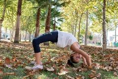 Kleines Mädchen, welches die Brücke in einem Park im Herbst herstellt stockfotografie