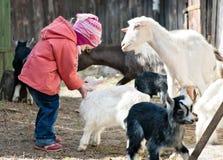 Kleines Mädchenspielen Lizenzfreie Stockfotografie