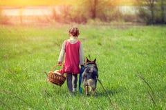 Kleines Mädchen, das mit Hund geht Stockfoto