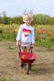 Kleines Mädchen, das mit Schubkarre auf dem Feld geht Stockfotografie