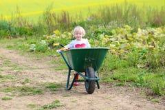 Kleines Mädchen, das mit Schubkarre auf dem Feld geht Stockbild