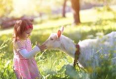 Kleines Mädchen in der Natur Stockfotografie