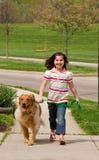 Kleines Mädchen-gehender Hund Stockfoto