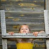 Kleines Mädchen steht auf einer hölzernen Leiter an der Wand eines Dorfhauses Stockfotografie