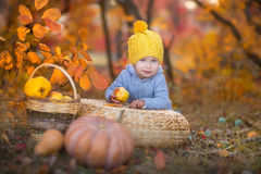 Kleines nettes Baby im gelben Winterhut, der auf Kürbis im Herbstwald allein sitzt Stockbild