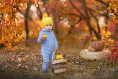 Kleines nettes Baby im gelben Winterhut, der auf Kürbis im Herbstwald allein sitzt Lizenzfreie Stockfotografie