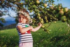 Kleines nettes Mädchen mit einem Kranz auf seinem Kopf Stockbild