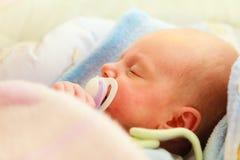 Kleines neugeborenes Baby 24 Tagesschlaf Lizenzfreie Stockfotos