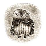 Kleines Owl Sitting In eine Höhle Stockfoto