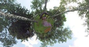 Kleines Planetenvogel ` s Haus im Park stock footage
