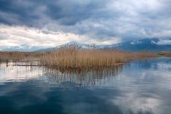 Kleines Prespa Seelandschaftsbild, Mazedonien, Griechenland Stockbilder