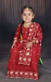 Kleines Punjabimädchen Lizenzfreies Stockfoto