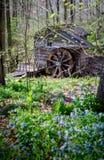 Kleines rustikales im Wald errichten Stockfoto