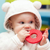 Kleines Schätzchenschätzchen kaut auf einem weichen Plastikspielzeug Lizenzfreie Stockfotografie