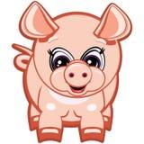 Kleines Schwein Stockfotos