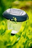 Kleines Solargarten-Licht, Laterne im Blumenbeet Stockfotos