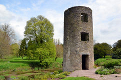 Kleines Turmteil des Geschwätz-Schlosses in Irland Lizenzfreie Stockfotos