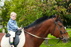 Kleinkind auf großem Pferd Stockfotografie