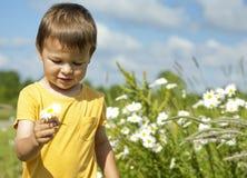Kleinkind, das eine Blume trägt Lizenzfreie Stockbilder