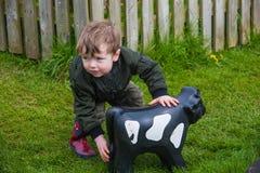 Kleinkind, das mit Spielzeugkuh spielt stockfoto