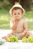 Kleinkind, das Trauben isst Stockfotografie