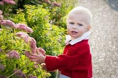 Kleinkind im Garten Stockbild