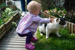Kleinkind und Katze Lizenzfreie Stockfotos