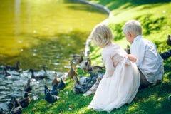 Kleinkinder Junge und Mädchen, die auf dem Gras nahe dem See und die Tauben mit Brot eingezogen sitzen Lizenzfreies Stockbild