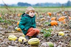 Kleinkindjunge, der den Spaß sitzt auf enormem Halloween-Kürbis hat Stockfotografie