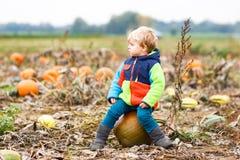 Kleinkindjunge, der den Spaß sitzt auf enormem Halloween-Kürbis hat Lizenzfreie Stockbilder