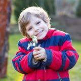 Kleinkindjunge in der roten Jacke, die Schneeglöckchen hält, blüht Stockfoto