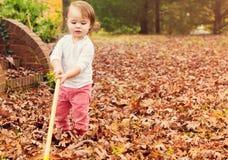 Kleinkindmädchen, das Blätter harkt Stockbilder