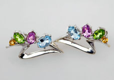 klejnotów biżuterii srebro Fotografia Royalty Free