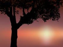 Klem-kunst van silhouetboom Stock Foto