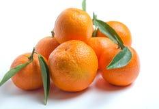 klementine mandarine Orange Tangerine Stockbilder
