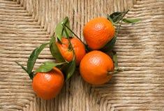 Klementine mit Blättern Lizenzfreies Stockbild