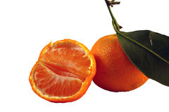Klementinen Stockfotografie
