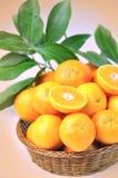 Klementinen lizenzfreies stockbild