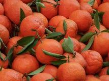 Klementinen am Markt Stockfoto